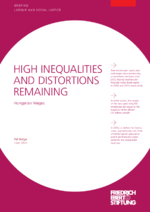 High inequalities and distortions remaining